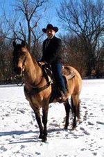 Robonhorse1-150